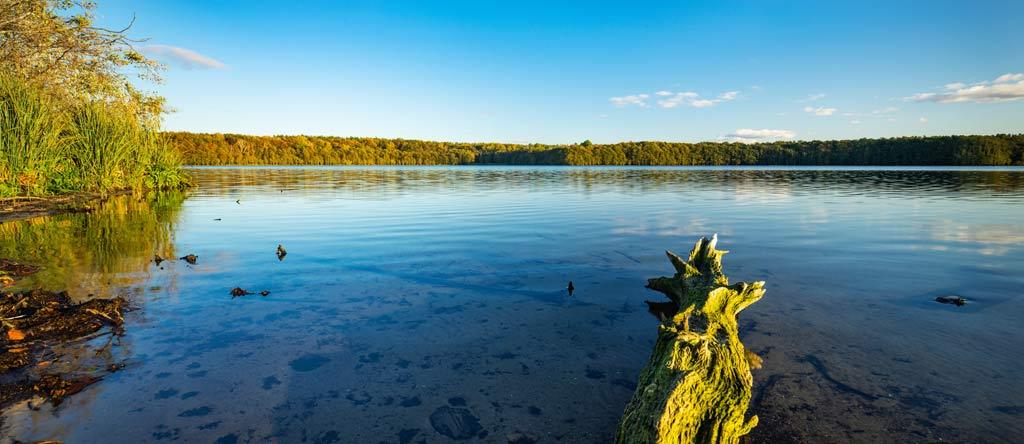 Der Müritz Nationalpark liegt im Zentrum der Mecklenburgischen Seenplatte. Besonders vom Wasser aus bietet das Areal atemberaubende Einblicke in naturbelassene Landschaften.