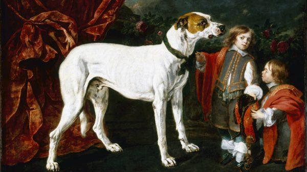 """Das Gemälde mit dem Originaltitel """"Hund, Zwerg und Knabe"""" von Jan Fyt hat den neuen Titel """"Hund, kleinwüchsiger Mann und Junge"""""""