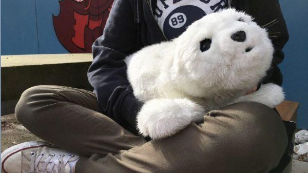 Ein Roboter in Form einer Robbe und mit weißem Fell liegt auf dem Schoß.