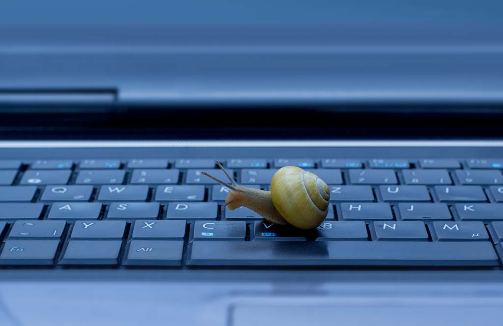 Schnecke kriecht auf Laptop-Tastatur.