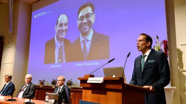 Thomas Perlmann, Sekretär der Nobelversammlung und des Nobelkomitees, verkündet die Gewinner des Nobelpreises für Physiologie oder Medizin 2021 während einer Pressekonferenz im Karolinska-Institut in Stockholm.